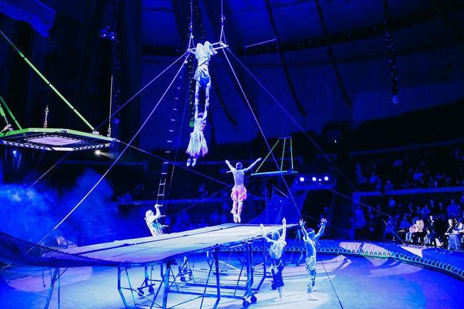 Батуты в цирковом представлении